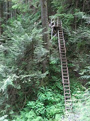 One of the steeper ladders we encountered on Day 2